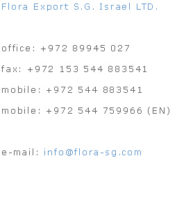 find e-mail address in israel