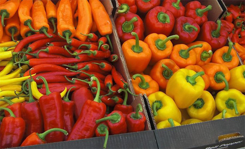 Bell pepper selected fresh vegetables